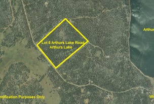 Lot 8 Arthurs Lake Road, Arthurs Lake, Tas 7030