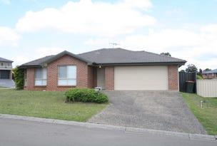 18 Riley James Drive, Raworth, NSW 2321