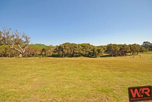 Lot 710 Vokes Court, Willyung, WA 6330