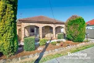 44 Carandotta Street, Mayfield West, NSW 2304