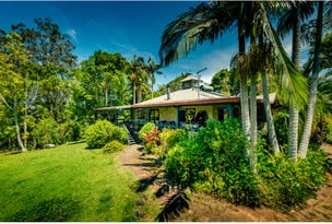 299 Promised Land Road, Bellingen, NSW 2454