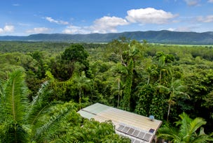 286 Forest Creek Road, Daintree, Qld 4873