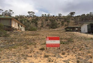 Lot 56 Tom Groggin Drive, Younghusband, SA 5238