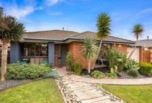 13 Bianca Drive, Aspendale Gardens, Vic 3195