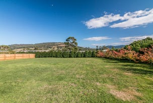Lot  1 Flood Road, Huonville, Tas 7109