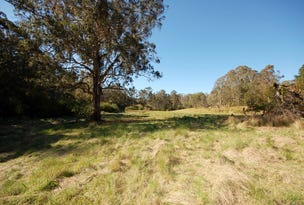 Lot 2 Tyringham Road, Dorrigo, NSW 2453