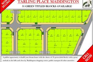21 Tarling Place, Maddington, WA 6109