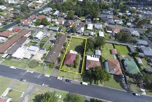 19 Fifth Street, North Lambton, NSW 2299