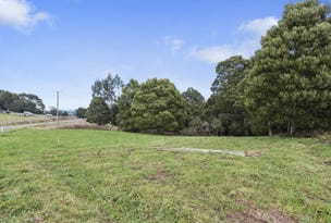 18 Dehnerts Track, Beech Forest, Vic 3237