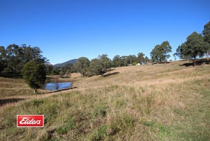231 Kimbriki Road, Burrell Creek, NSW 2429