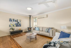19 Boonal Street, Singleton, NSW 2330