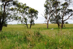 Lot 1/225 Inverloch Outtrim Road, Outtrim, Vic 3951