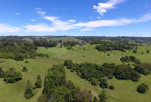 160A Geraghtys Acess, Richmond Hill, NSW 2480