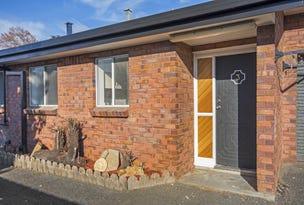 3/115A Elphin Road, Newstead, Tas 7250