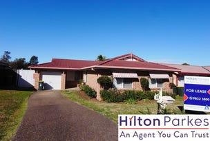 58 Monica Avenue, Hassall Grove, NSW 2761