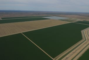 Prattenville Irrigation, Bourke, NSW 2840