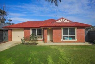 3 Thespian Court, Murray Bridge, SA 5253