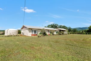 732 Old Palmerston Highway, Beatrice, Qld 4886
