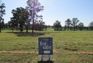 Lot 510 Portrush Avenue, Cessnock, NSW 2325