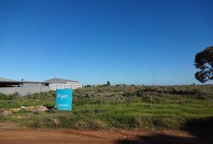7 Bain Avenue, Port Pirie, SA 5540