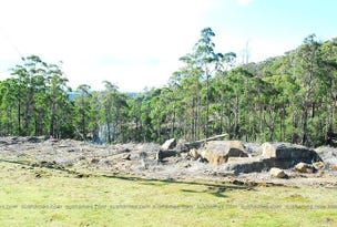 Lot 39 Forest Heights Drive, Tugrah, Tas 7310