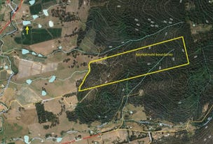 Lot 3 Rifle Range Road, Cygnet, Tas 7112