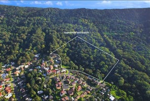 Lot 1006, Brokers Road, Balgownie, NSW 2519