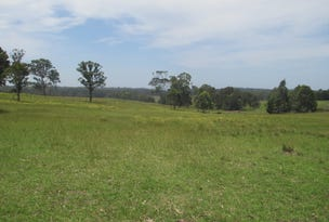 Lot 1 Congo Road DP 804972, Congo, NSW 2537