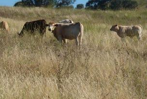 2122 Long Point Rd, Mullion Creek, NSW 2800