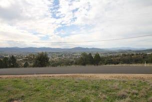 65 Ray Carter Drive, Quirindi, NSW 2343
