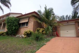 55 Sanderling Street, Hinchinbrook, NSW 2168