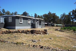 10185 Highland Lakes Road, Brandum, Tas 7304