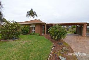 12 Canberra Avenue, Mildura, Vic 3500