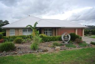 20 Jillaroo Way, Muswellbrook, NSW 2333