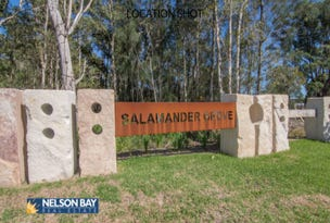 Lot 7 Curlew Cove, Salamander Bay, NSW 2317