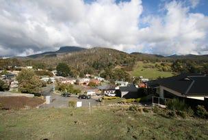 7 Hadley Court, Lenah Valley, Tas 7008