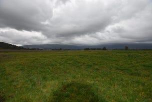 Lot 1 Dairy Plains Road, Dairy Plains, Tas 7304
