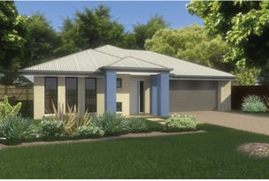 Lot 2810 Dragonfly Dr, Waterford County, Chisholm, NSW 2322