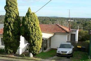 46 Villa Road, Waratah West, NSW 2298