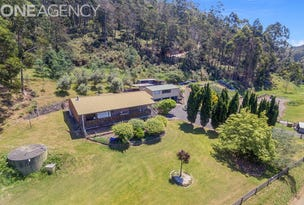394 Wilmot Road, Forth, Tas 7310