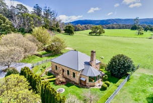 445 Mersey Hill Road, Mole Creek, Tas 7304
