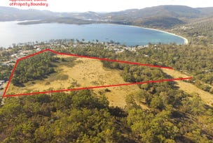 Lot 1 Noyes Road, White Beach, Tas 7184