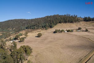 Lot 4 Moss Beds Road, Lachlan, Tas 7140