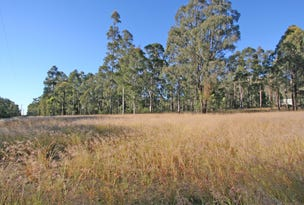 Lot 2, DP1167878 Inlet Road, Bulga, NSW 2330