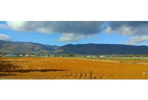 Lot 103 Acropolis Road, Nelshaby, SA 5540
