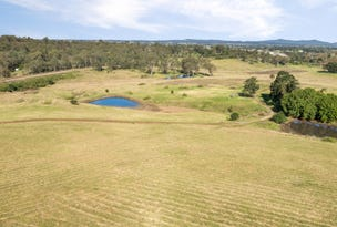 Lot 209 Esk Circuit, Maitland Vale, NSW 2320
