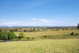 Lot 115 Mount Harris Drive, Maitland Vale, NSW 2320