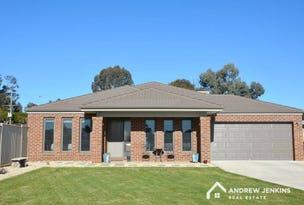 1 Takari Street, Barooga, NSW 3644