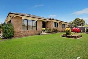 11 Charles Todd Cresent, Werrington County, NSW 2747