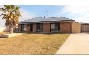 21 Wedge Street, Ledge Point, WA 6043